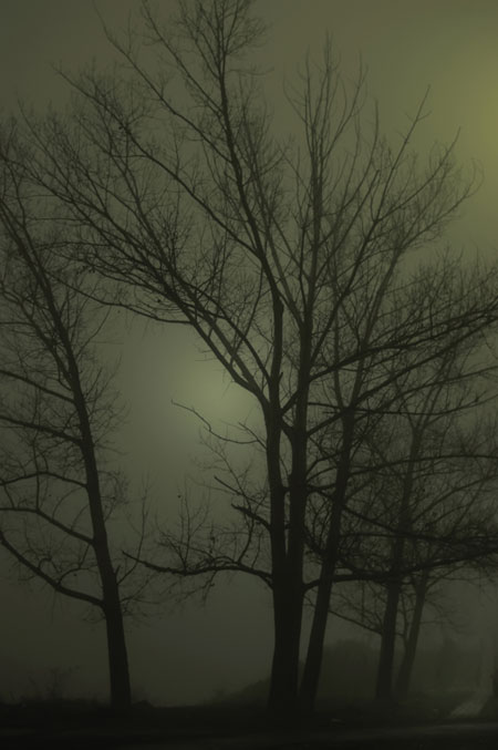 Living by  the Dark MIst photograph by Katia (HaateKaate)